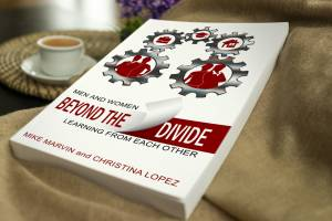 Beyond the Divide Book
